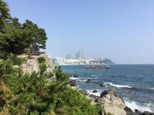 Gorgeous View Behind The Westin Chosun